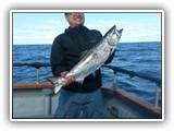 King (Chinook) Salmon